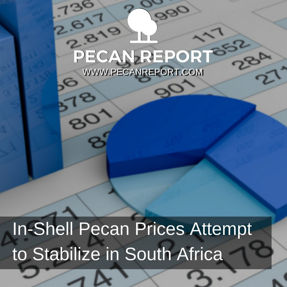 IN-SHELL PECAN PRICES ATTEMPT TO STABILIZE IN SOUTH AFRICA - PECAN